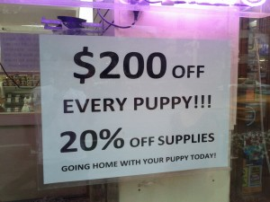 Wow, now we can afford our new puppy!