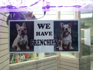 Why yes, we have Frenchies