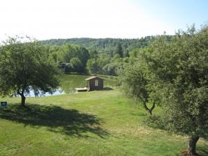 Steve's Pond