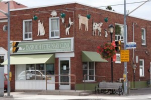 Danforth Veterinary Clinic, 966 Pape Avenue.