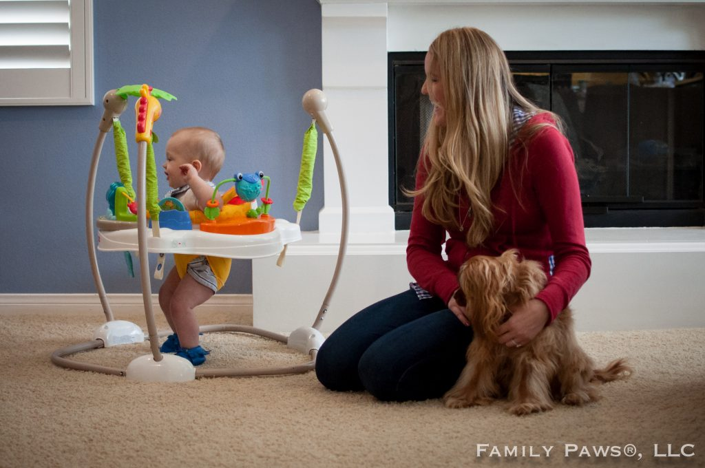 Dog and Baby Integration Training